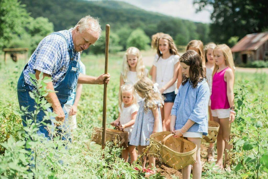 Blackberry Farm-foraging